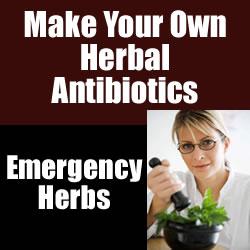 UCAffiliateCreative_Herbs