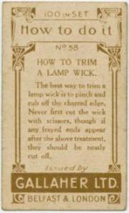 Lampwock 1