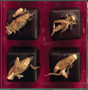 Image: Gold encrusted bugs adorn chocolates (Public Domain)