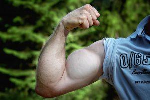 Photo source: Pixabay, CC0 Public Domain, https://pixabay.com/en/muscles-arm-be-mus-kelt-man-arm-811479/