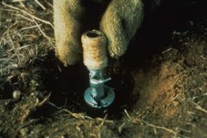 Image: M-44 Cyanide Bomb, USDA